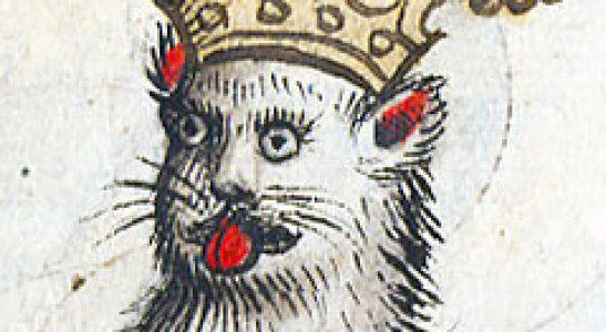 Cat Ingrid Leeches